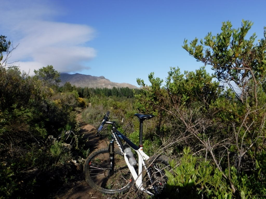 Mountain biking Bankhoek conservancy