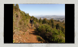 mountain biking on single trail